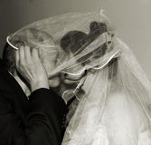 Couple kissing. Portrait of the a newly wedded couple kissing Royalty Free Stock Image