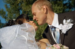 Couple kissing. Portrait of the a newly wedded couple kissing Stock Image