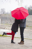 Couple kissing behind a red umbrela Stock Images