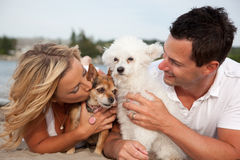 Couple with dogs. Happy couple on the beach with their two pet dogs, with wife giving the brown terrier a kiss Stock Photo
