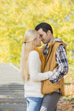 Couple kissing in park during autumn Stock Photography