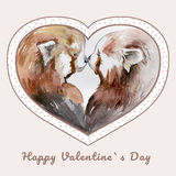 Couple of kissing red pandas in heart shaped frame Stock Photography
