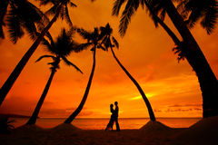 Couple kissing at tropical beach with palm trees with sunset in Stock Photography
