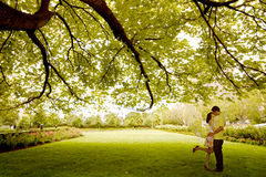 Couple kissing under tree. Asian young couple kissing under tree Royalty Free Stock Photography