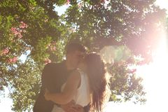 Couple Kissing Under the Tree during Daytime Royalty Free Stock Photos