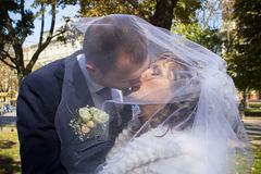 Couple kissing under the veil Stock Images