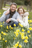 Couple Kneeling In Daffodils Stock Images