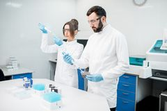 Laboratory assistants working with test tubes. Couple of laboratory assistants in uniform working with analysis in test tubes at the medical laboratory Stock Image