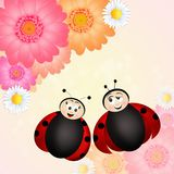 Couple of ladybugs. Funny illustration of couple of ladybugs Stock Image