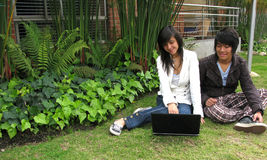 Couple with laptop in nature Royalty Free Stock Image