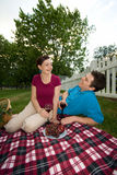 Couple Laughing on a Picnic Date-Vertical. A couple laughing on a picnic date. They are holding wine glasses and looking at one another.-Vertically framed shot stock photos