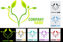 Couple leaf logo Stock Images