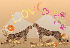 Couple of leopards Royalty Free Stock Photos