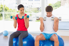 Couple lifting dumbbells while on fitness balls in gym Royalty Free Stock Photo