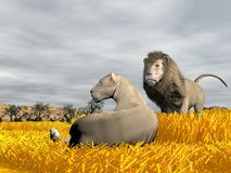 Couple of lions in the savannah - 3D render Royalty Free Stock Images