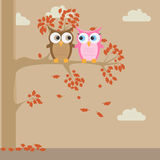Couple little cute cartoon owls on a tree Stock Photo