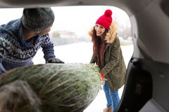 Couple Loading Freshly Cut Down Christmas Tree Into Back Of Their Car Royalty Free Stock Images