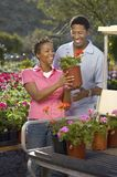 Couple Loading Potted Plants On Golfcart. Happy African American couple loading potted plants on golfcart Stock Photography