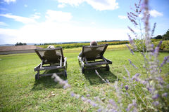 Couple in long chairs enjoying sunny day Royalty Free Stock Photo