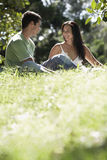 Couple Looking At Each Other In Park Royalty Free Stock Image