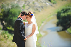 Couple Looking into Eyes. Bride and groom looking into eyes of each other Royalty Free Stock Photography