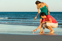 Free Couple Looking For Shells At Sunset Royalty Free Stock Photography - 38250247