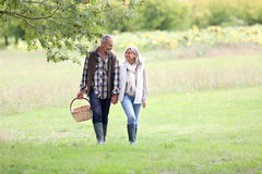Couple looking for mushrooms on sunny day Stock Photography