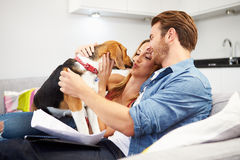 Couple Looking Through Personal Finances At Home With Dog. Couple Looking Through Personal Finances At Home Playing With Dog Whilst Sitting On Sofa Stock Images