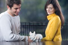 Couple looking at piggy bank Stock Images