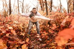 Couple in love in the autumn leaves royalty free stock photo