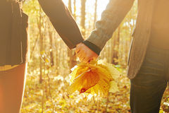 Couple in love with autumn leaves Stock Photo