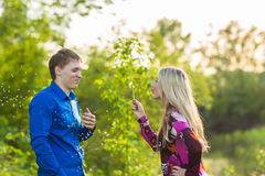 Couple in love blowing blowballs flowers in faces of each other. Smiling and laughing people having good time outside on Royalty Free Stock Images