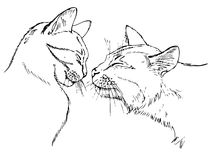 Couple in love cats. Sketch on white background stock illustration
