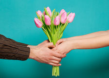 Couple in love holding a bouquet of tulips on a blue background. Stock Image