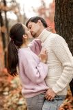 Couple in love in the autumn leaves stock photography