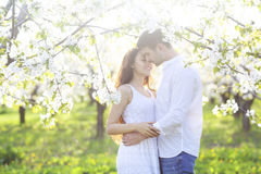 Couple in love kissing and hugging in spring park Royalty Free Stock Photos