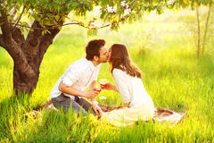 Couple in love kissing in nature Stock Images