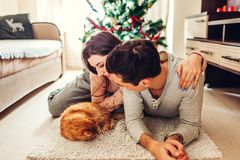 Couple in love lying by Christmas tree and playing with cat at home. Man and woman relaxing royalty free stock image
