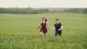 A couple in love running through a wheat field, holding hands, smiling, slow mo, steadicam shot stock video footage