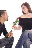 Couple in love sharing a rose Royalty Free Stock Images