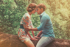 Couple in love sitting on tree in summer stock photo