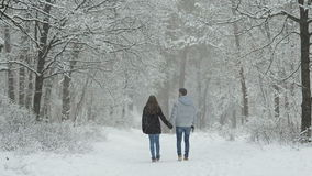 Couple in love in a snowy forest. stock video