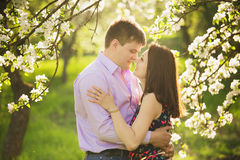 Couple in love standing in spring blooming garden Stock Photography