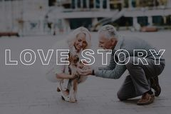 Couple Love Story. Old Couple Sat Down Pat Dog. stock photos
