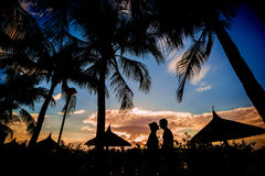 Couple in love at sunset. Beach. Palms Stock Image