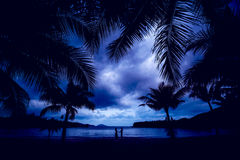 Couple in love at sunset. Beach. Palms Royalty Free Stock Images