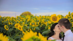 Couple in love surrounded by sunflowers. HD stock footage