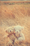 Couple love teddy bears hugging. Couple love teddy bears hugging sitting on dry grass in the morning vintage style Stock Photos