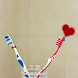 Couple in love of two toothbrushes.St. Valentines Day. Royalty Free Stock Images