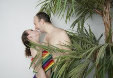 Couple in love under the palm. Young couple under a palm tree in the Studio Royalty Free Stock Photos